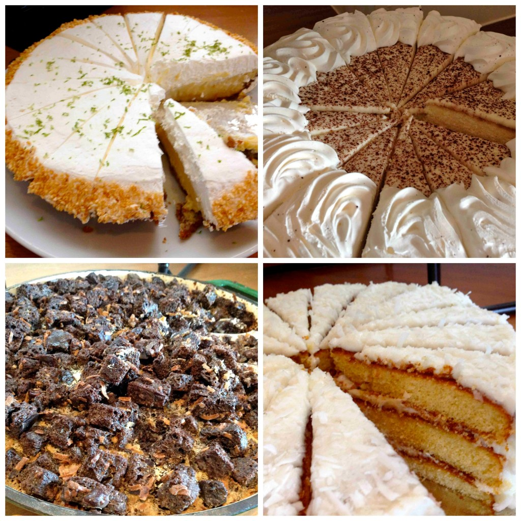 cake oystercatchers