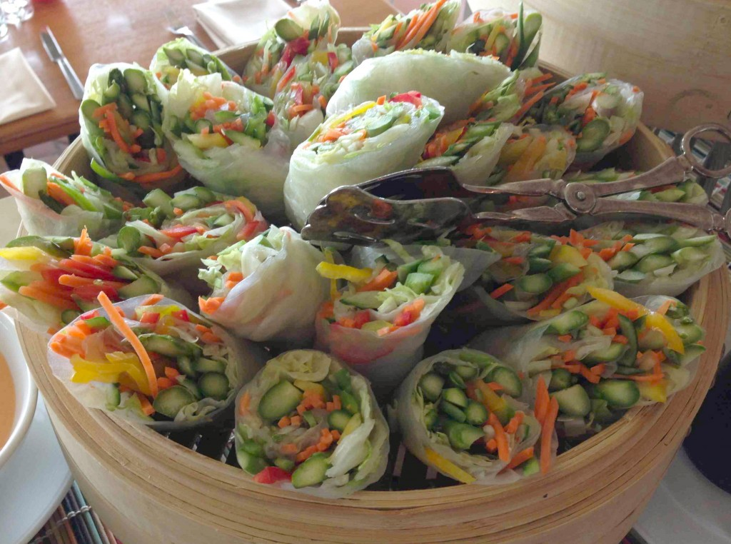 spring-roll-oystercatchers