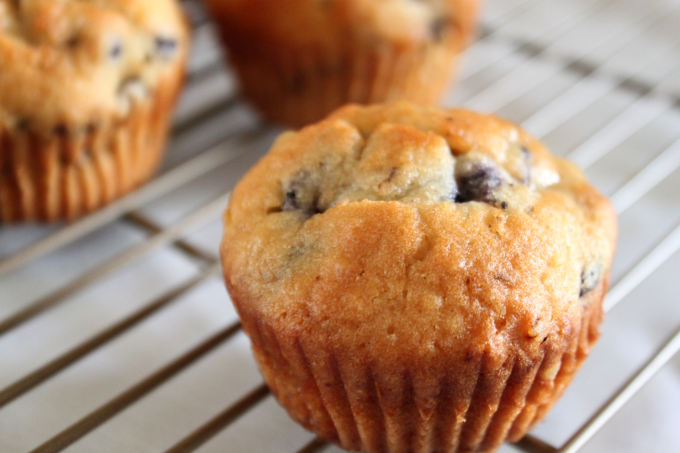 National Blueberry Muffin Day | Jumbo Blueberry Muffins