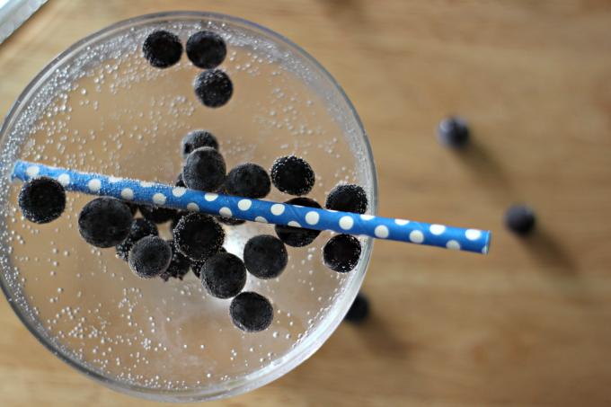National Vodka Day | Blueberry Bash Cocktail
