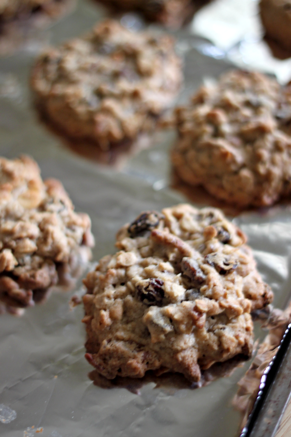 National Pecan Cookie Day | Raisin Pecan Oatmeal Cookies